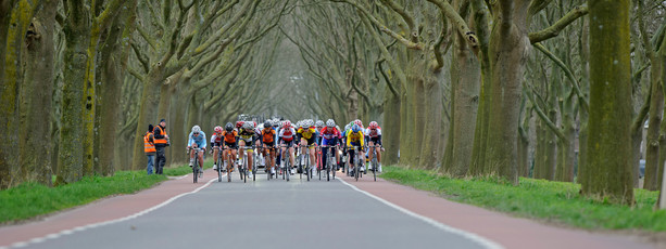 Wielrennen / cycling